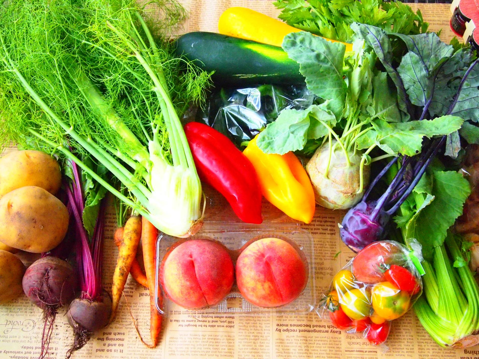 「無農薬野菜」は表示違反!! 野菜ソムリエがお伝えします。