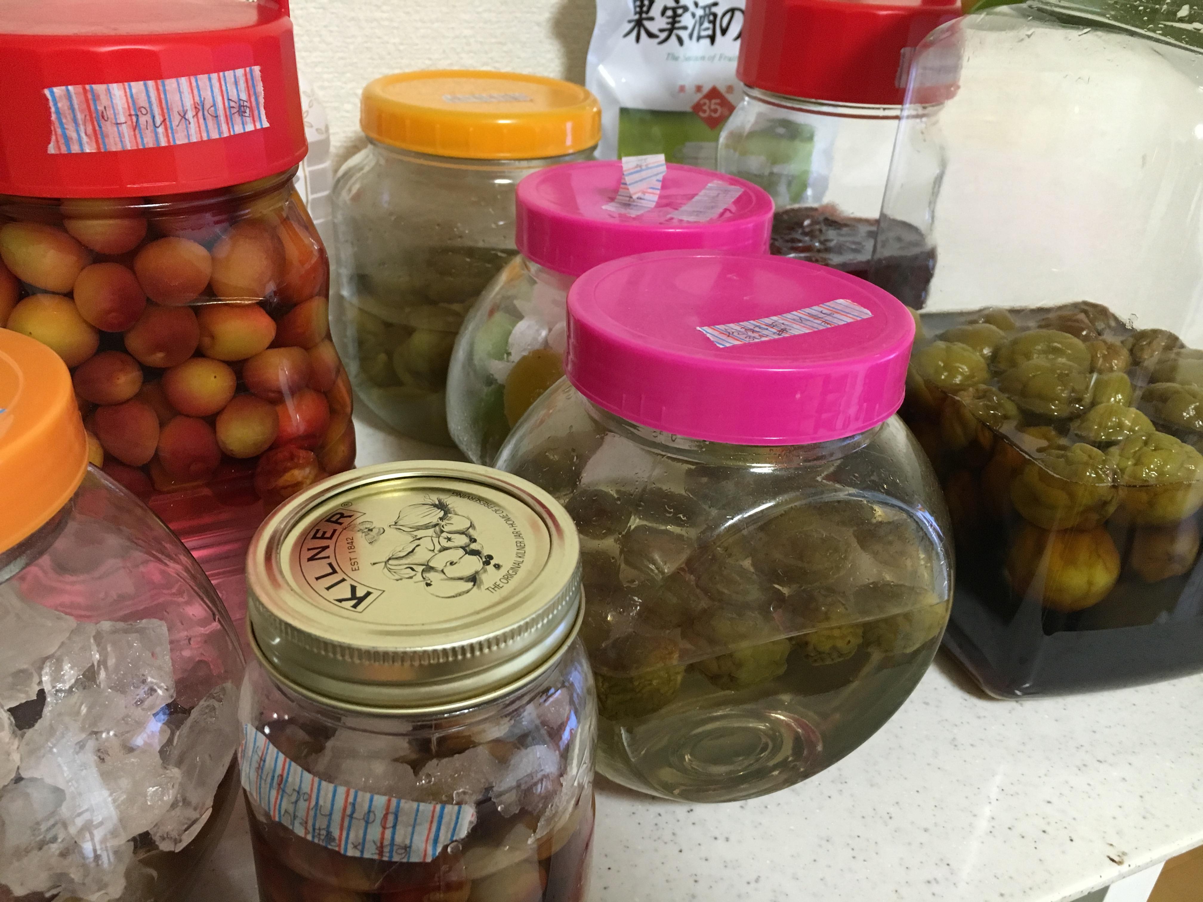 梅の実を食べる、梅の砂糖漬け。カリカリの食感が美味しい。