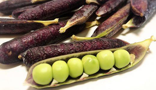 【初心者向け】ツタンカーメン豆ご飯の美味しい炊き方。ピンク色になる豆ご飯