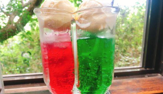 豊田「のうむ」の2色のペアクリームソーダが可愛い!