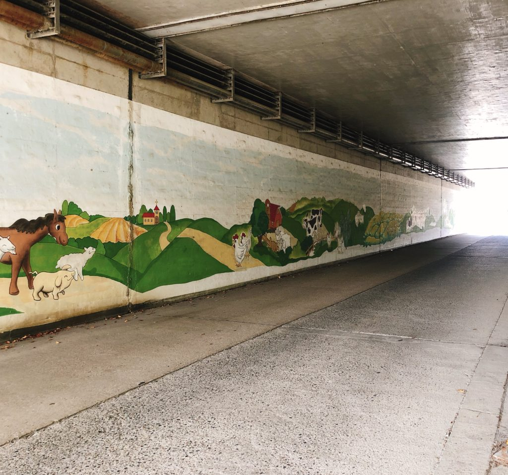 愛知牧場のトンネル