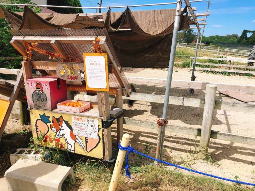 愛知牧場の餌やり体験