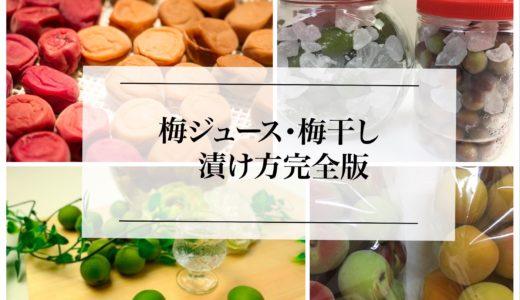 【初心者向け梅の完全攻略法】梅干しの漬け方、梅ジュースの作り方。失敗しない方法は?