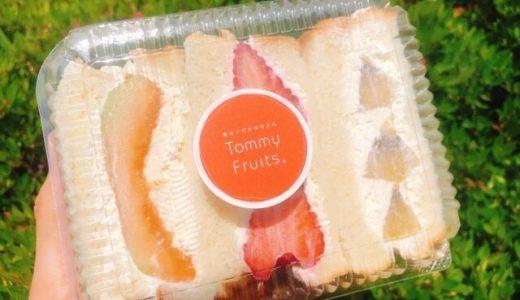 【大府】トミーフルーツ(tommyfruits)のフルーツサンド、ドライフルーツが可愛い!