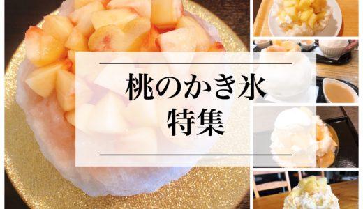 名古屋・愛知県の桃のかき氷のオススメのお店『5選』