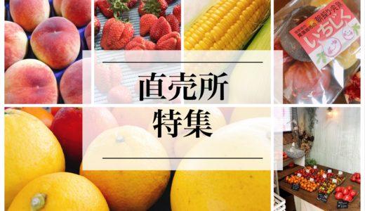 愛知県の果物の直売所オススメ『7選』野菜農家直売所『4選』