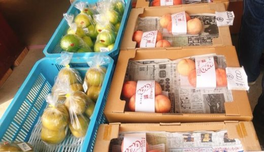 大府の桃と梨の直売所『加古フルーツ園』が新鮮でお値打ち!