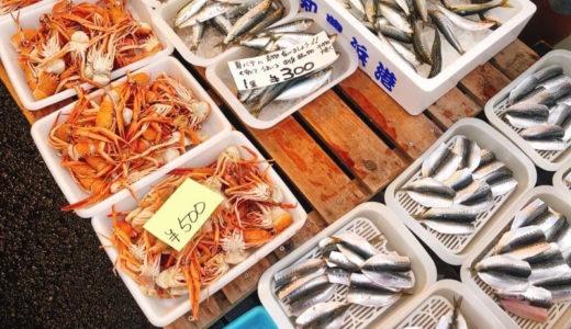 西尾市【三河一色さかな村】で、採れたて新鮮な魚が買える!朝市が大賑わい。