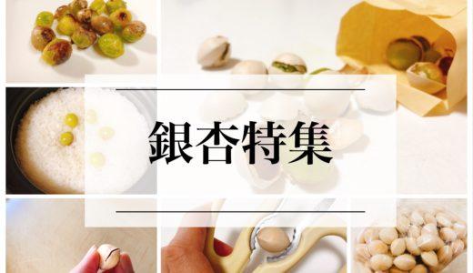 【保存版】銀杏のレンジでの加熱の仕方。冷凍保存はできる?冷凍した銀杏の食べ方は?