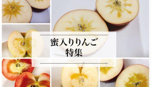 蜜入りりんごは甘い?りんごの蜜は甘くない?蜜入りしやすいりんごのまとめ