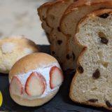 ヴィンチパンドーロのパン