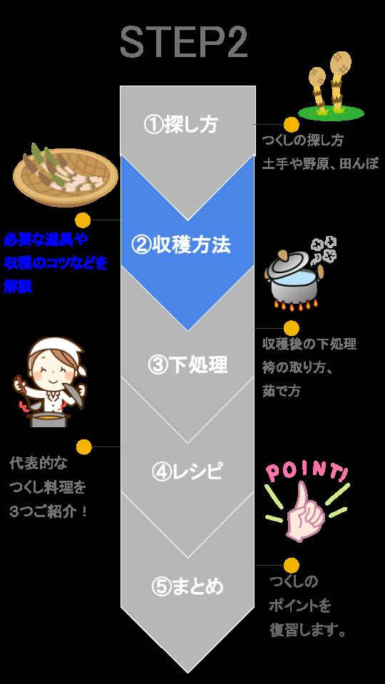 【図解】つくし ステップ2
