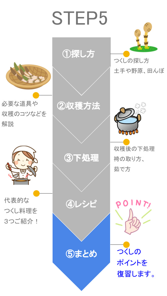 【図解】つくし ステップ5