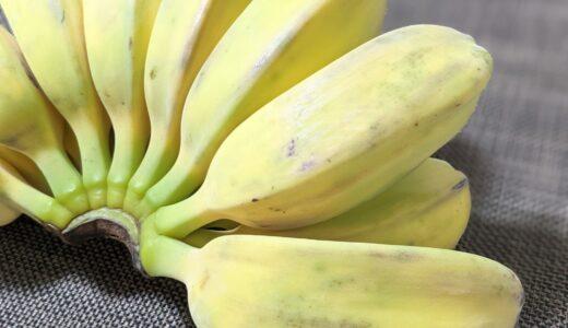 調理用バナナ「カルダババナナ」は黄色くなってからがオススメ!レシピや食べ方もご紹介!