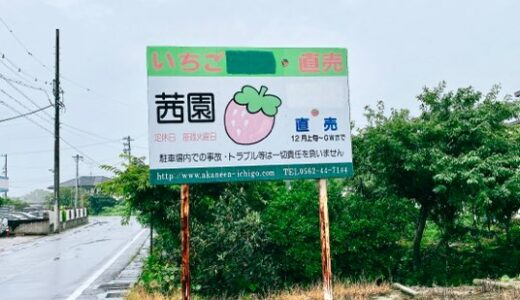 【大府の桃】茜園の桃が絶品!販売期間は6月~9月