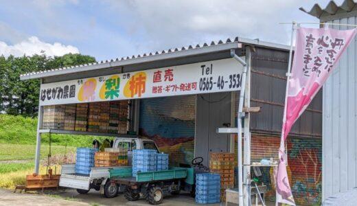 豊田市!『はせがわ農園』の「桃」は最高!完熟桃、すもも、梨が購入できる!