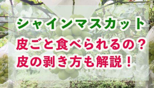 【果物のプロ解説】シャインマスカットは皮ごと食べられるの?皮の剥き方も解説!