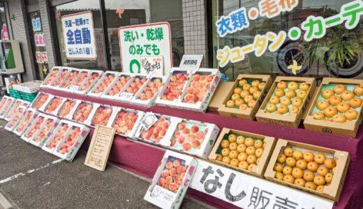 犬山市「クリーニング屋 Amie(アミー)」で果物がお値打ちに購入できる!