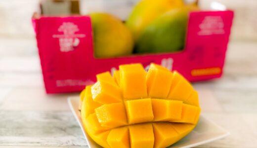 新商品!コストコ【メキシコマンゴー(キーツ種)】は甘くて美味い!食べ頃、保存方法、切り方を解説!